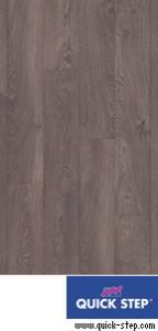 QSM 038 Дуб старинный серый